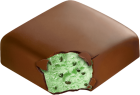 mint chocolate chip bar
